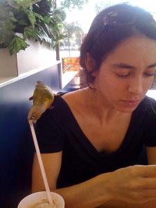 Sneaky sneaky, bird.